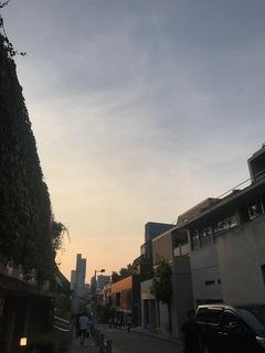 2017-07-29T17:30:16.JPG