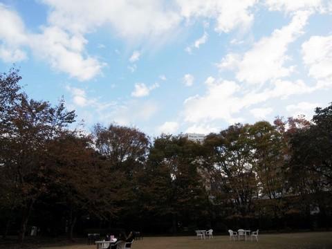 2010111913.JPG