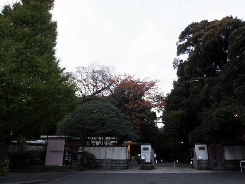 2010111937.JPG