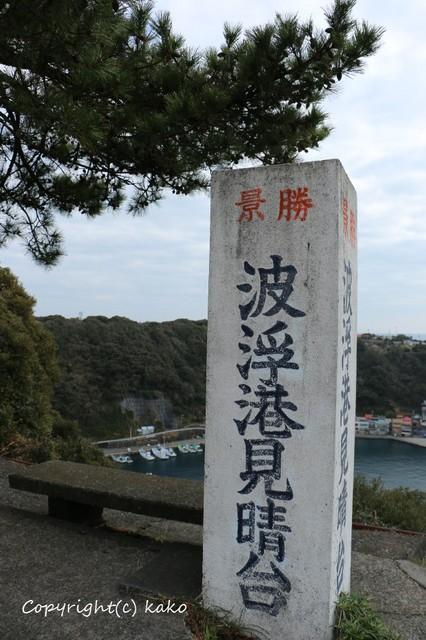 2016013114.JPG